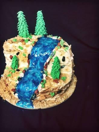 outdoor cake 2